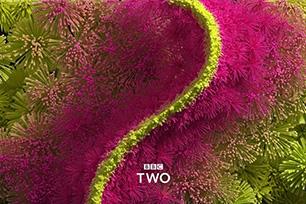 英国第二电视频道BBC Two品牌重塑,新LOGO设计诠释新定义
